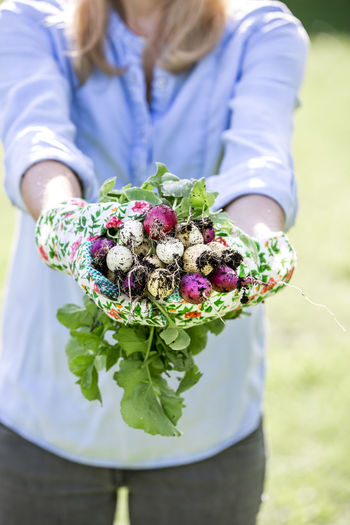 Mid adult woman holding radishes at farm