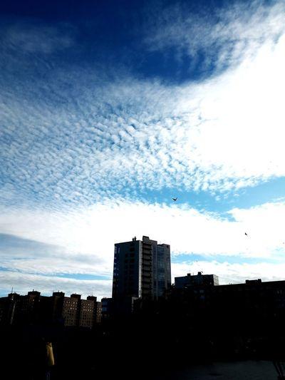 Silhouette buildings in city against sky