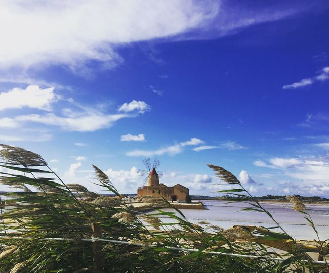 Wind Sicily