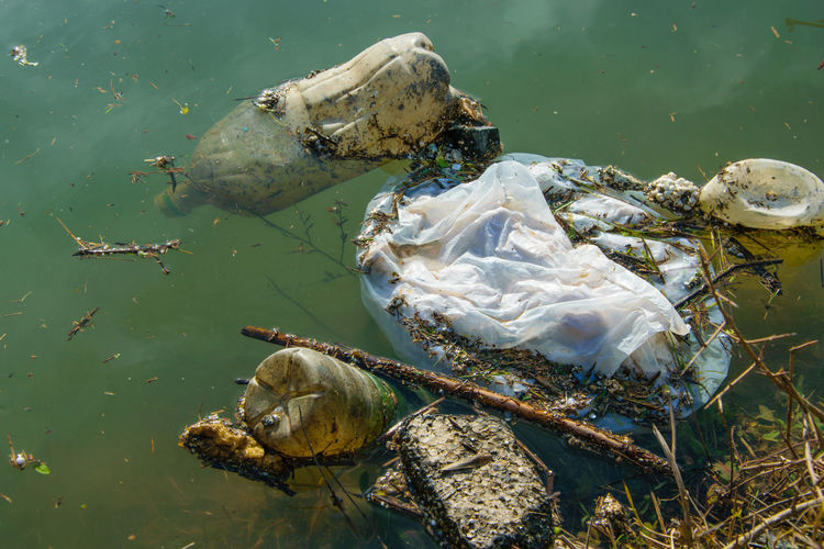 Albania Industrial Industry Polluted Water Pond Rubbish Bussiness Concept Dirty Ecological Ecology Impurity Marine Nature No People Outdoors Plastic Polluted Pollution Sea Life Toxic Water Waterfront