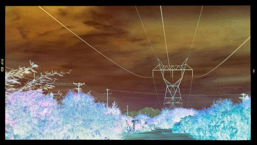 Architecture Auto Post Production Filter Built Structure Cable Cloud - Sky Connection Day Digital Composite Electricity  Electricity Pylon Fuel And Power Generation Light Low Angle View Nature No People Outdoors Plant Power Line  Power Supply Sky Technology Transfer Print Tree