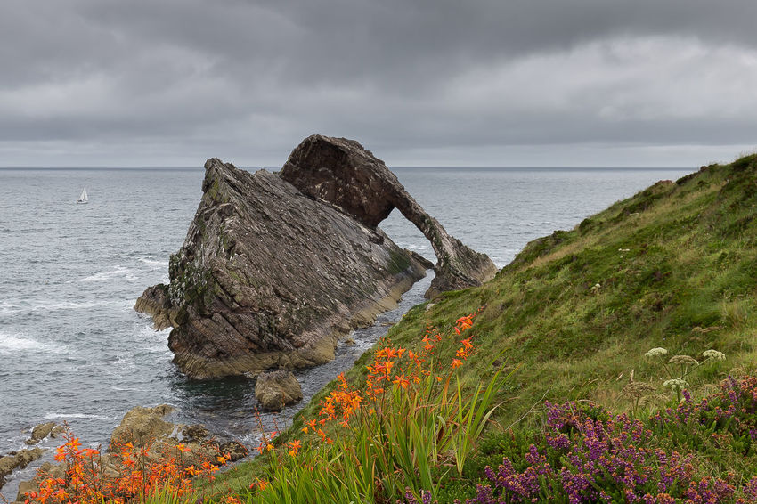 Bowfiddle Rock Rock Scotland Arch Beach Beauty In Nature Bowfiddle Cloud - Sky Day Flower Grass Heather Horizon Over Water Nature No People Outdoors Portknockie Rock - Object Scenics Sea Sea Arch Sky Tranquil Scene Tranquility Water