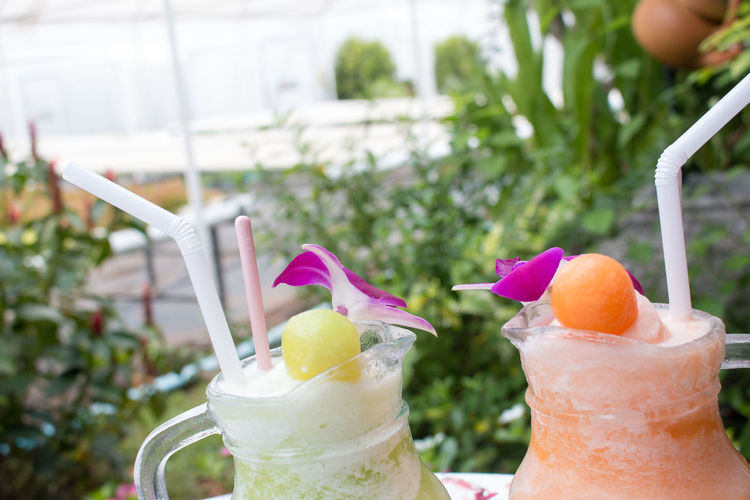 Close-up of fresh drinks in pitchers with flowers on table against plants