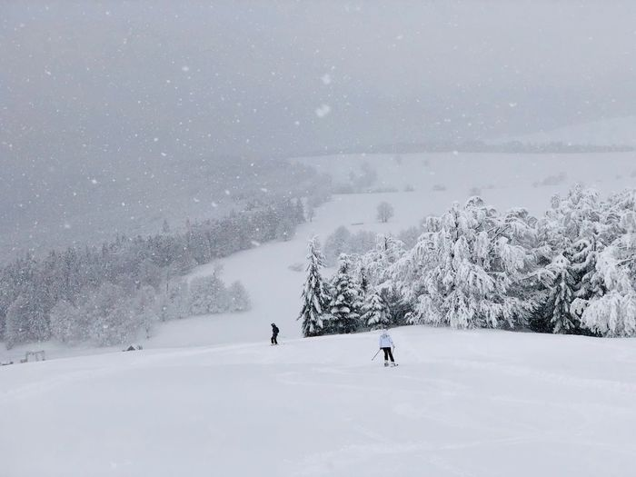 Skiers on the slope in winter surrounded by forest covered in snow