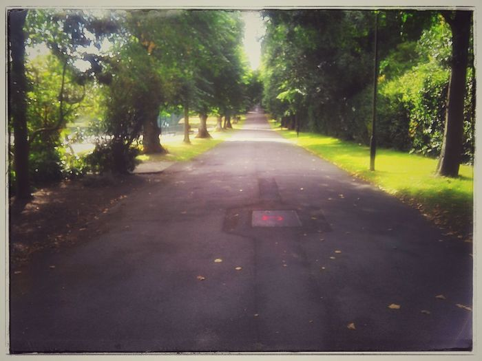 All Paths Lead To Somewhere Lane Parklife2015