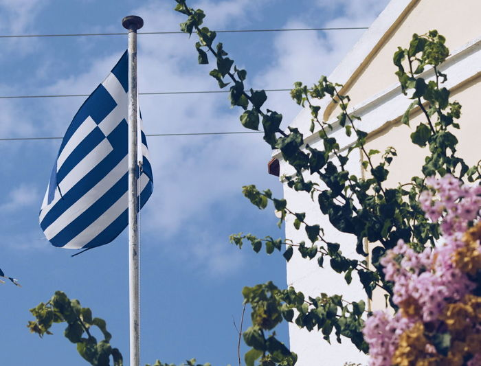 Low angle view of greek flag and flowering plants against cloudy sky