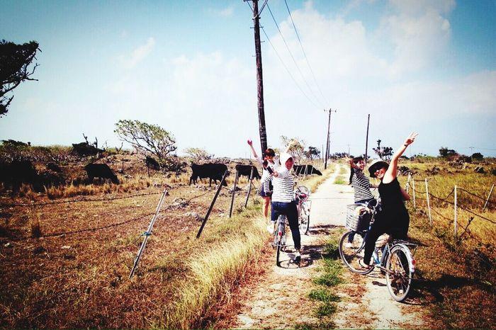 Cycling Bycicle Okinawa Ishigaki  My Favorite Photo Enjoy The New Normal