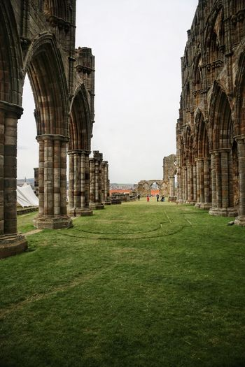 Whitby Whitby Whitby Abbey Architecture Built Structure Grass The Past Arch History Sky Travel Destinations Building Exterior Travel Nature Tourism Day No People Clear Sky Building City Plant Ancient Outdoors Architectural Column Ancient Civilization