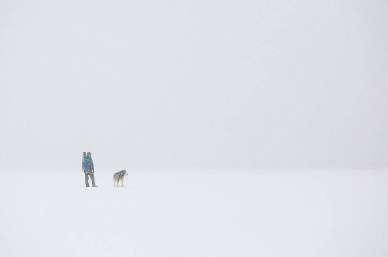 People walking on snow covered land against sky