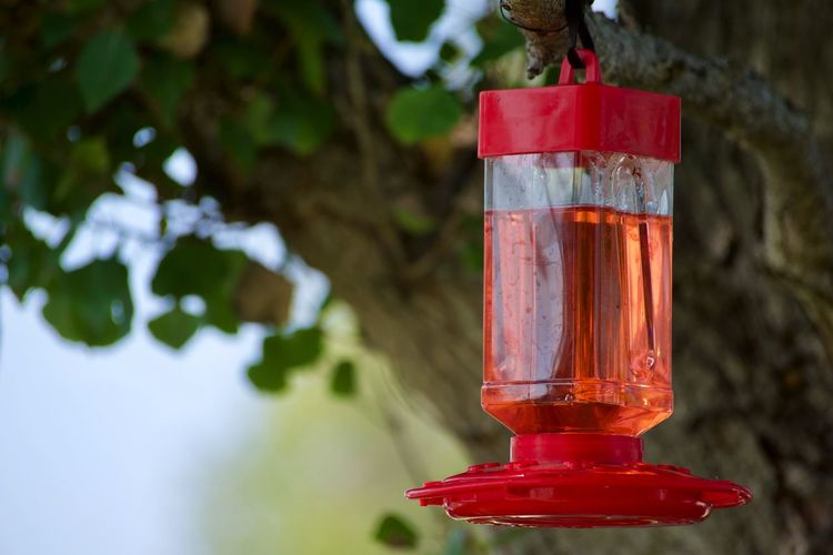 Close-up of red lantern hanging against wooden post