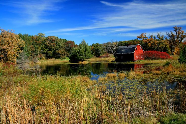 Tree Water Built Structure Architecture Tranquility House Blue Tranquil Scene Building Exterior Grass Sky Plant Scenics Beauty In Nature Nature Growth Day Non-urban Scene Countryside Solitude Red Barn Barn Abandoned Slarsenphotography