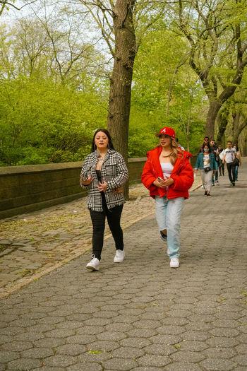 People walking on footpath in park