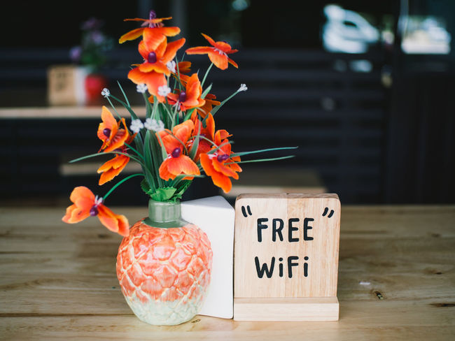 Flower Text No People Day Table Indoors  Nature Freshness Flower Head Close-up Free Wifi WIFI Zone Vase Bouquet
