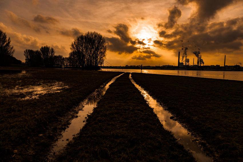 #rhinegrasslandskasslerfeld05 Duisburg EyeEm Best Shots EyeEm Nature Lover Beauty In Nature Cloud - Sky Landscape Nature No People Outdoors Scenics Silhouette Sky Sunset Tranquil Scene Tranquility Tree Water