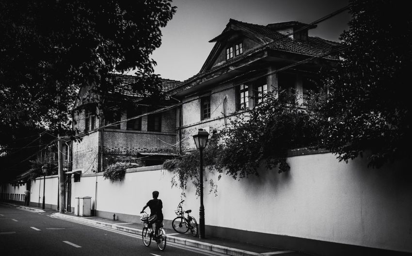 Bicycle Building Exterior Architecture Transportation Built Structure Road Tree Street Cycling Riding Land Vehicle Real People Mode Of Transport Outdoors Rear View Day Full Length Men One Person City