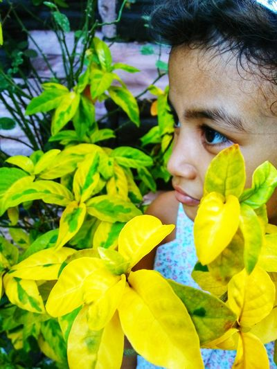 Yellow Childhood Headshot Leaf Yellow Flower Child Looking Down Front View Close-up Green Color
