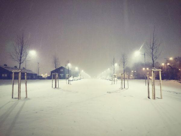 Vanishing Point Schnee in Mannheim /// Perspektive Fluchtpunkt Nachtaufnahme