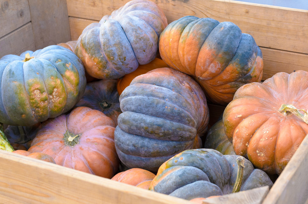 High Angle View Of Pumpkins In Crate At Market