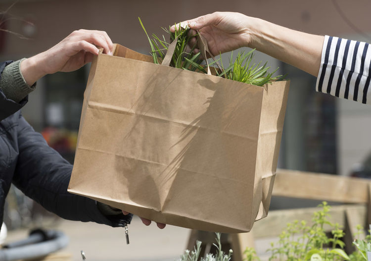 Close-up of hands holding paper bag outdoors