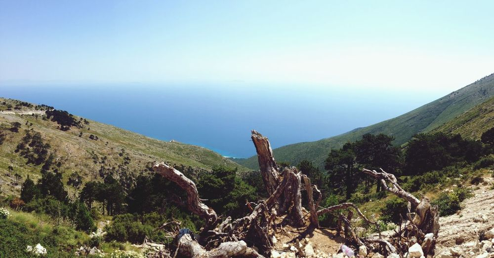 Croatia Landscape Seaview Woods