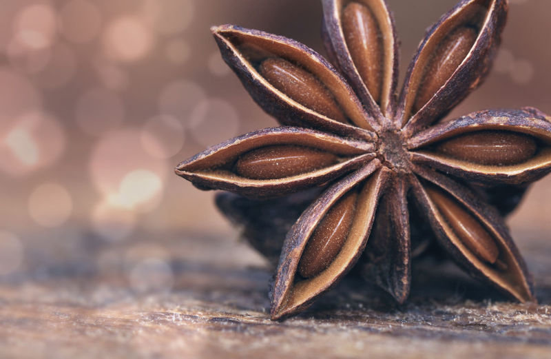Seeds Blur Lights Brown Celebration Christmas Close-up Copy Space Food Food And Drink Freshness Holiday Selective Focus Shape Spice Star Anise Star Shape Still Life Table