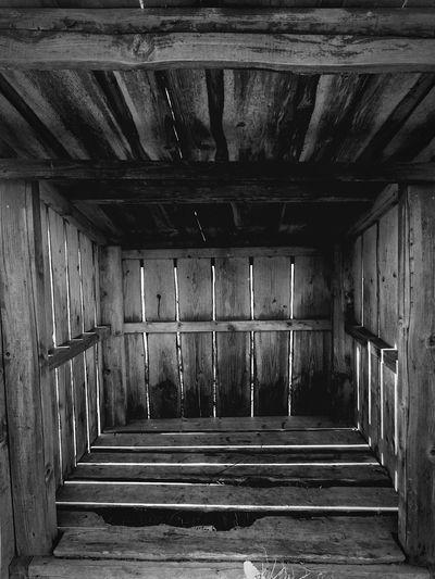 Wood Log Storage Black And White