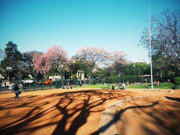 Buenos Aires 🌴🌴🍂☀ ILoveMyCity Glitch