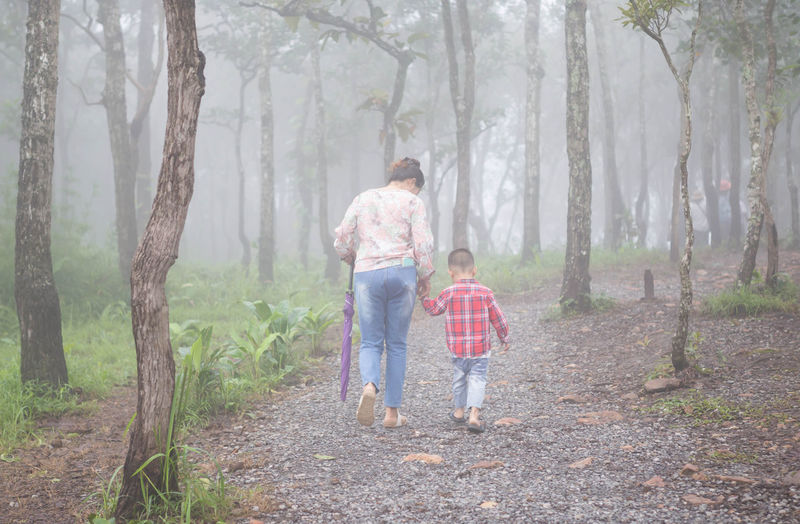 Rear view of mother and son walking in forest during foggy weather