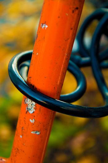 A black bike lock on an orange bike Biking Lifestyle Locked Orange Retro Security Weathered Anti-theft Bicycling Bike Closeup Colorful Concept Copyspace Detail Ecology Environment Equipment Fall Green Living Grunge Lock Safekeeping Securing Vintage