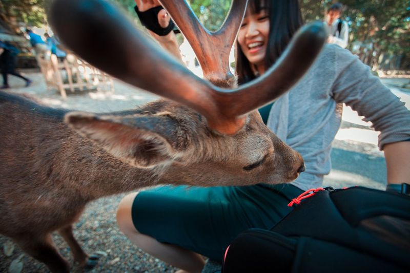 Troublemaker Deer Mammal One Animal Pets Domestic Animals Real People Domestic The Troublemakers Young Adult Leisure Activity Adult Young Women Lifestyles Outdoors Couple - Relationship Positive Emotion The Traveler - 2018 EyeEm Awards The Street Photographer - 2018 EyeEm Awards #urbanana: The Urban Playground