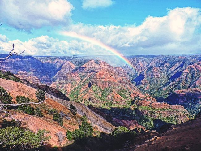 Waimea Waimea Canyon Grand Canyon Grandcanyon Kauai Hawaii Cliff Cliffs Canyon Rainbow Rainbows Rainbow Sky Hills Hillside On The Cliffs
