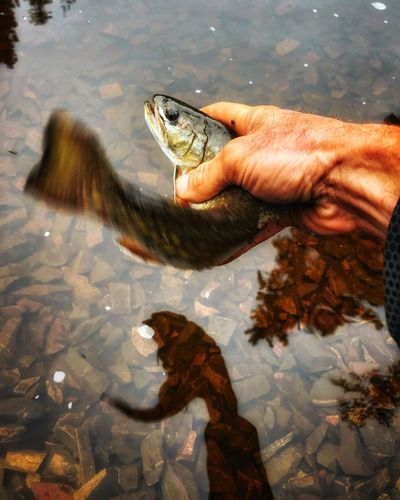 Man holding water in lake