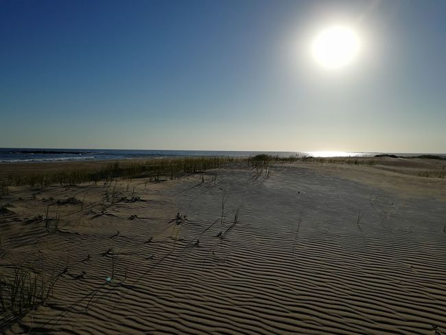Sand Marks Ripple Marks Wind Draws Sea Beach Scenics Tranquility Water Horizon Over Water Nature Tranquil Scene Beauty In Nature Sun Sand Clear Sky Outdoors Sky Landscape Blue Day No People Sunlight