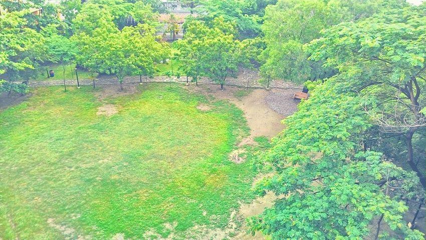 The field... Summerclass