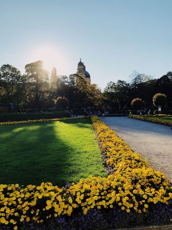 Beautiful sunset in Munich Yellow Outdoors Sunlight Beauty In Nature Architecture Green Color Clear Sky First Eyeem Photo EyeEmNewHere