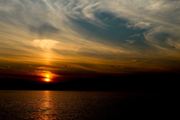 the yellow golden sunrise... Sunrise Water Sea Astronomy Gold Colored Reflection Sunlight Dramatic Sky Silhouette Sky Romantic Sky