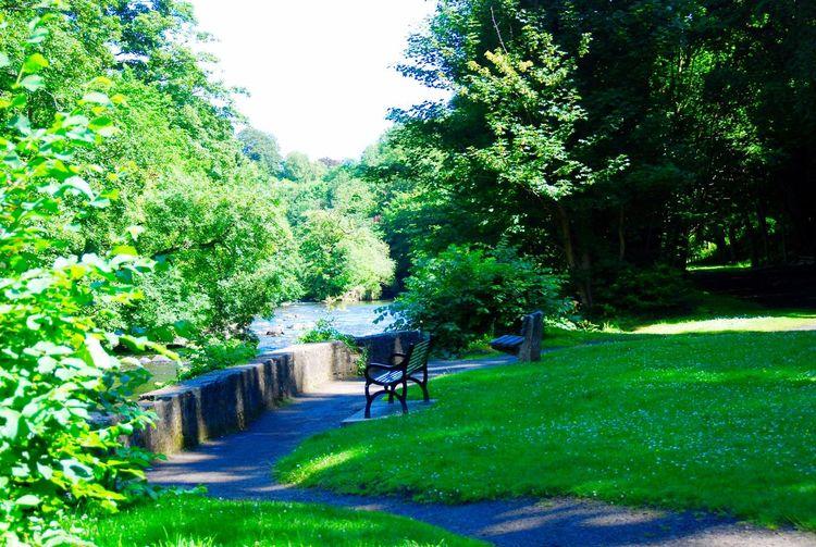 Cramond Edinburgh Water Trees And Nature