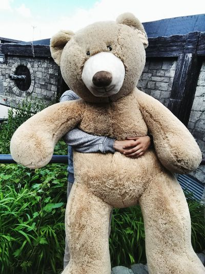 Cropped hands of person holding large teddy bear against wall