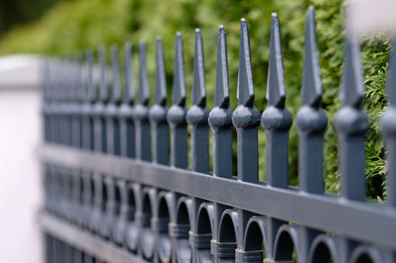 A beautiful elegant vintage grey and white fence made out of metal and stone with a green hedge in the city of Nuremberg, Germany, in March 2019 Plant Day No People Fence Barrier Outdoors Nature Boundary Security Safety Close-up Metal Forged Cast Iron Hedges Greylag Goose Gray White Background Green Color Vintage Decoration Garden House Horizontal Europe Germany Nuremberg Nürnberg Springtime Elegant Picket Fence In A Row Pattern Selective Focus Protection Focus On Foreground Repetition Growth Backgrounds