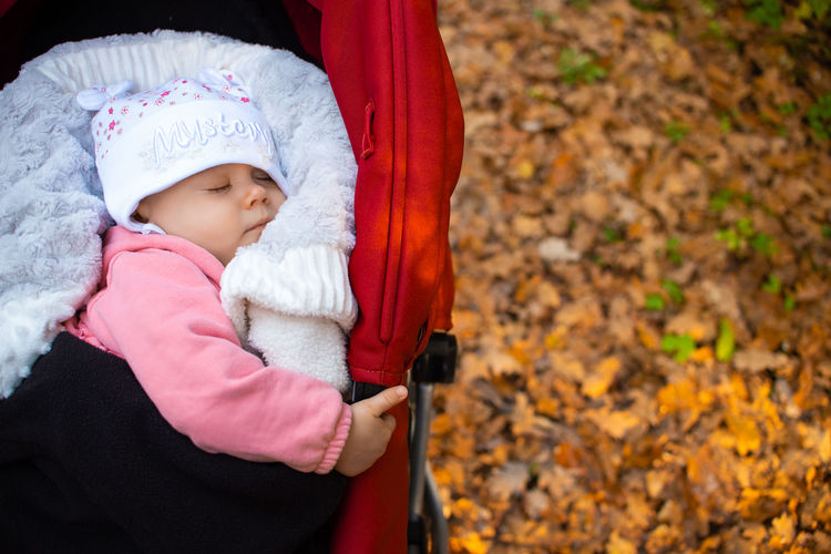 Cute baby girl sleeping in carriage over autumn leaves