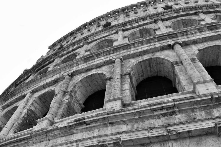 The Architect - 2017 EyeEm Awards History Architecture The Past Built Structure Outdoors Day Sky No People Cityscape Italy Rome Colosseo Building Exterior Travel Destinations Arts Culture And Entertainment Ancient Low Angle View Old Ruin Ancient Civilization Visual Feast Neighborhood Map Moving Around Rome
