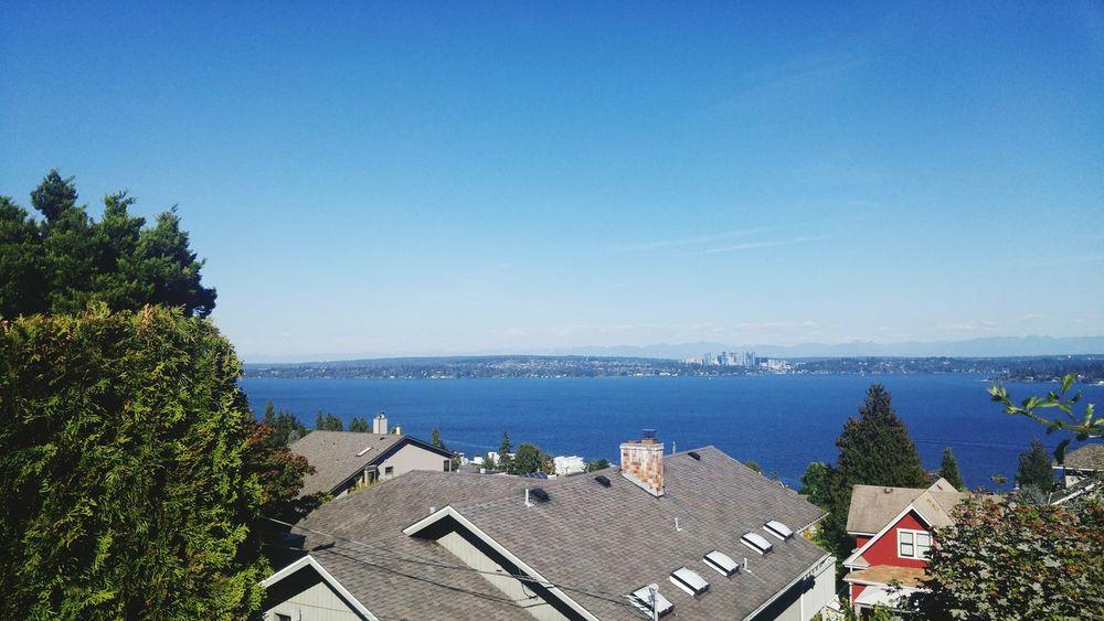 Lake Washington Bellevue Skyline Seattle Seattle View  Blue Sky Blue Summer Bright Colors
