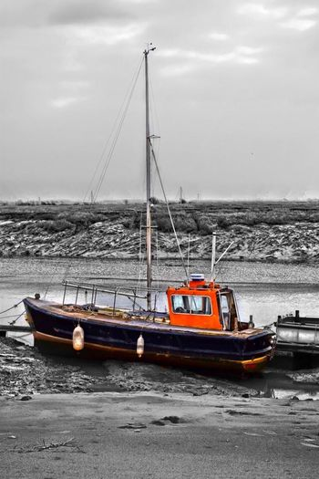 Boats Coloursplash