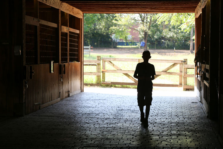 Silhouette of Child Standing In Barn Full Length One Person Building Walking Nature Silhouette Check This Out Summertime Summer Bare Tree Horse Stall Day Real People Standing The Way Forward Leisure Activity Summer Memories... Barn Wood Boy Childhood Childhood Memories