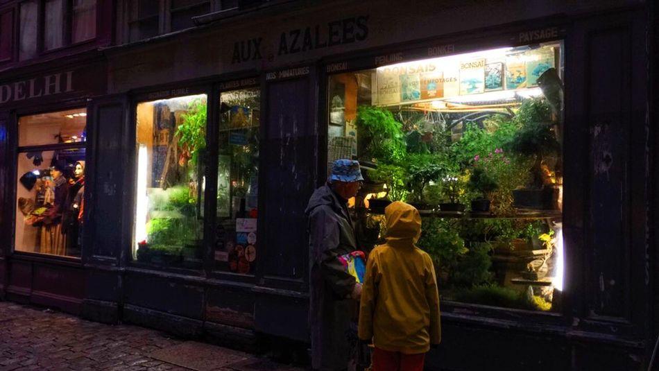 The Changing City Vieux Lyon  Lyon Old Plants 🌱 Plants Yellow Raincoatarnivorousplant] VSCO Vscocam