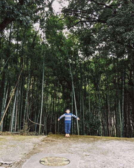 Tree Full Length Forest One Person Rear View Nature Outdoors Leisure Activity Standing Real People Tree Trunk Lifestyles Day Growth Beauty In Nature People Bamboo Grove Holiday Family Child Childhood Long Goodbye The Secret Spaces Art Is Everywhere The Great Outdoors - 2017 EyeEm Awards Be. Ready. Go Higher