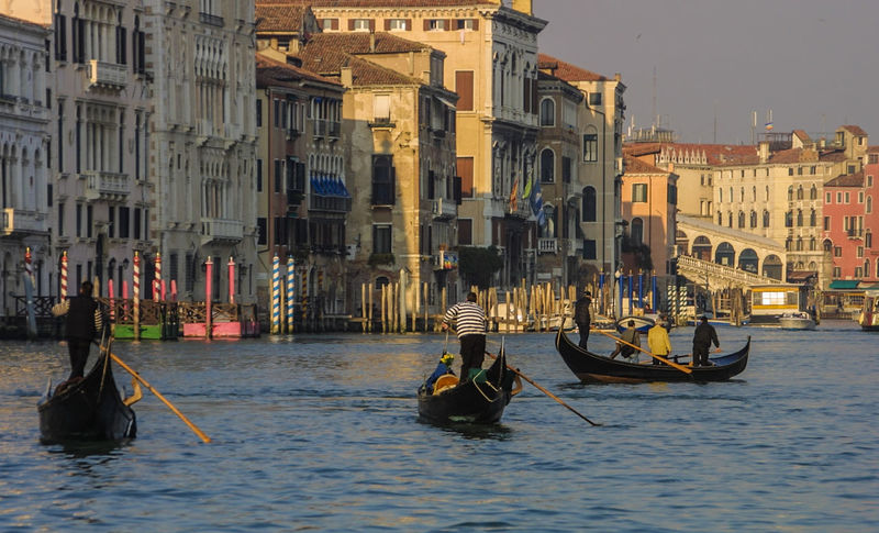 Canale Grande Venedig, Ohne Touristen, Lagune, Frühling, Venice, WithoutTourists, Springtime, City, Sea, Water, Historical, Old Town Architecture City Gondola Gondola - Traditional Boat Gondolier Large Group Of People Men Mode Of Transport Outdoors People Transportation Travel Destinations Water EyeEmNewHere