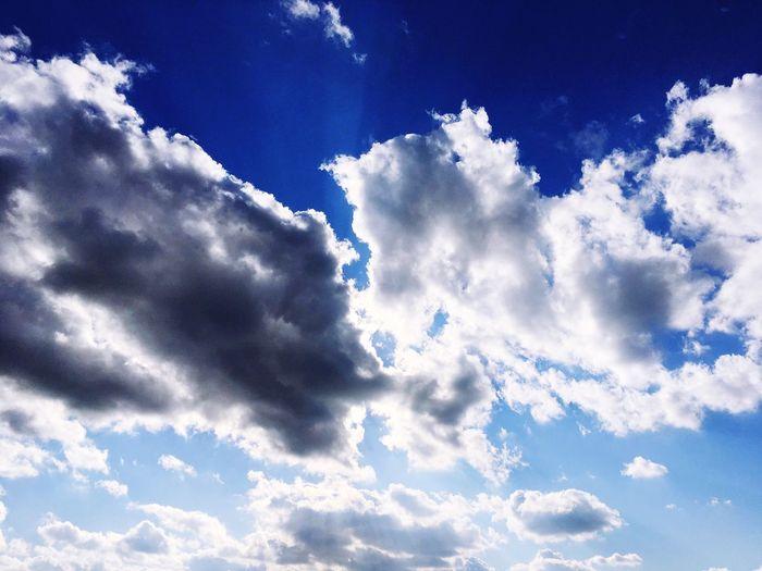 Cloud - Sky Nature Sky Only Simplicity