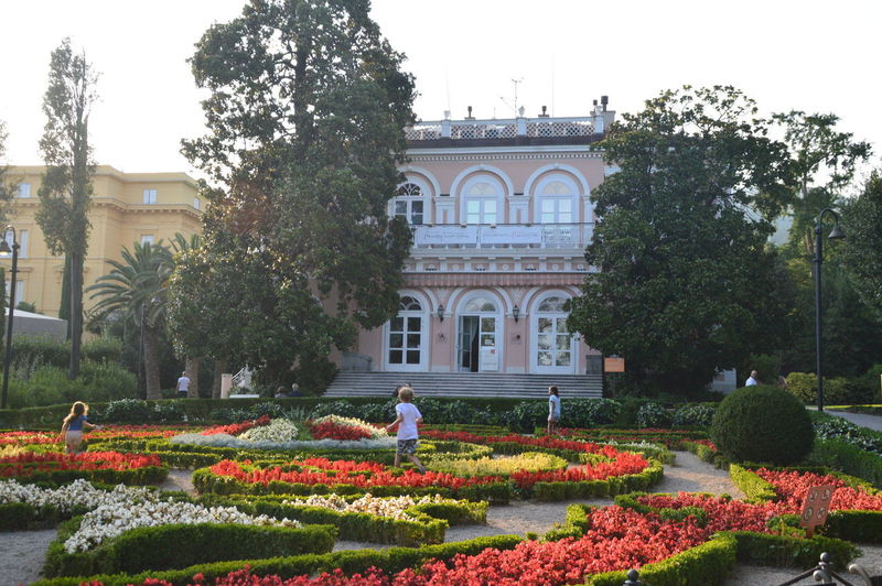 Flowers in garden with building in background