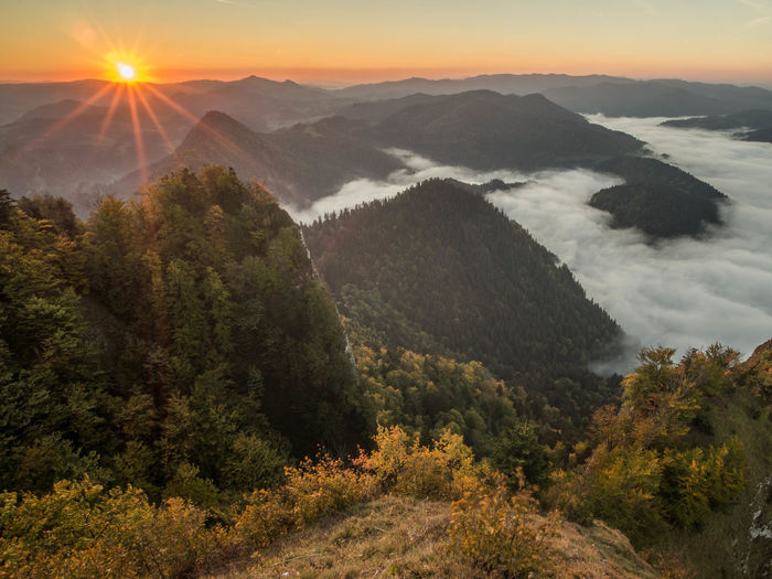Pieniny Poland Beauty In Nature Cloud - Sky Day Environment Fog High Angle View Idyllic Landscape Lens Flare Mountain Nature No People Non-urban Scene Outdoors Pieniny Plant Scenics - Nature Sky Sun Sunlight Sunset Tranquil Scene Tranquility Tree